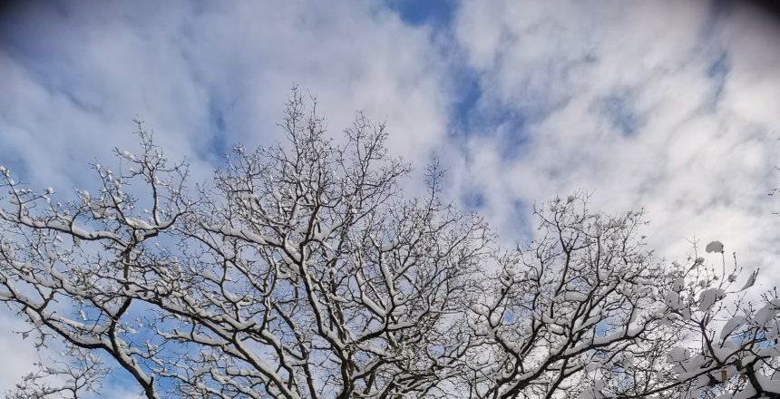 Sky_Winter